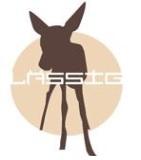 lassig diaper bag logo