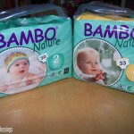Eco Friendly Disposable Diapers (Bamboo Nature) Review + Giveaway