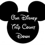 Homemade Walt Disney World Count Down Counter