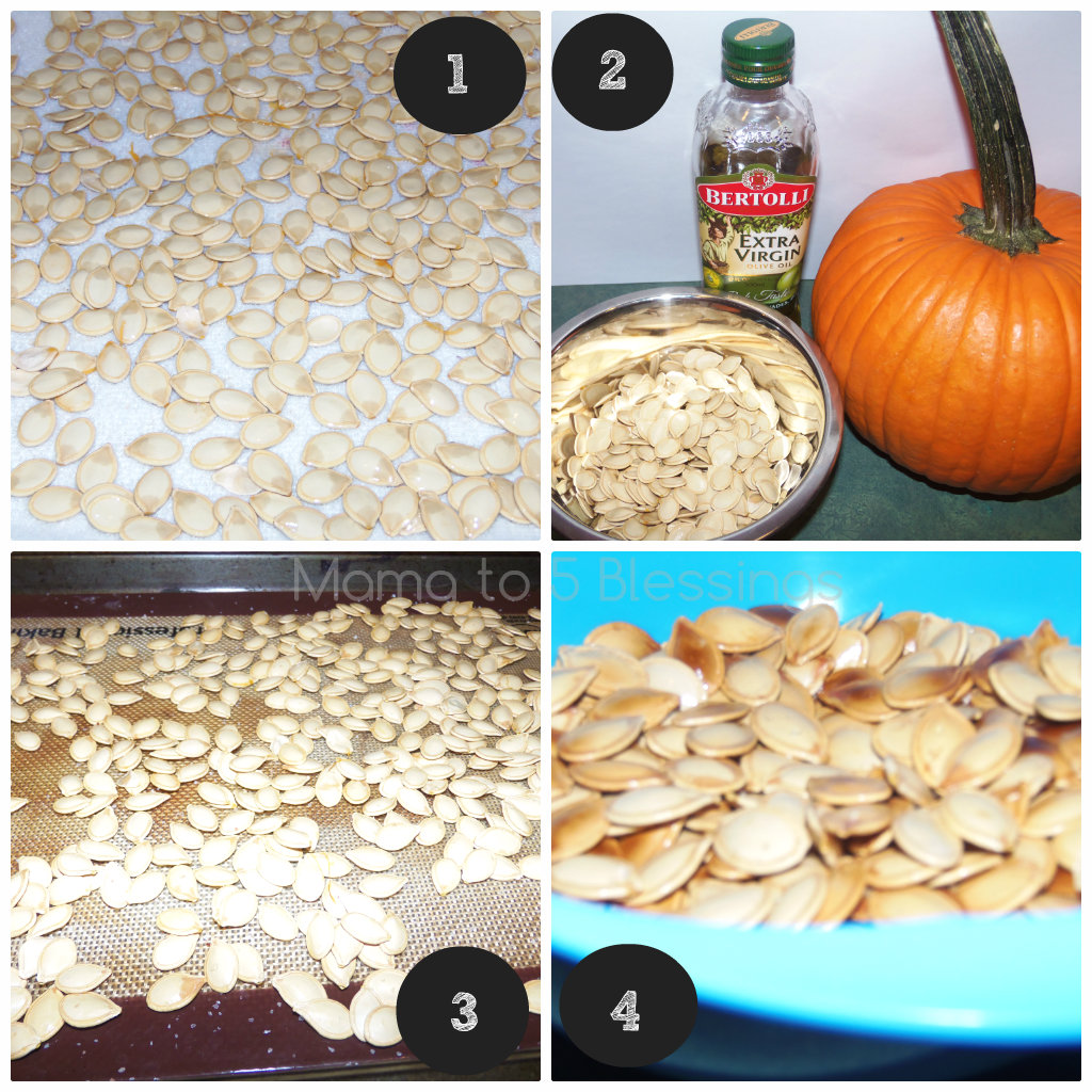 pumpkin seed collage