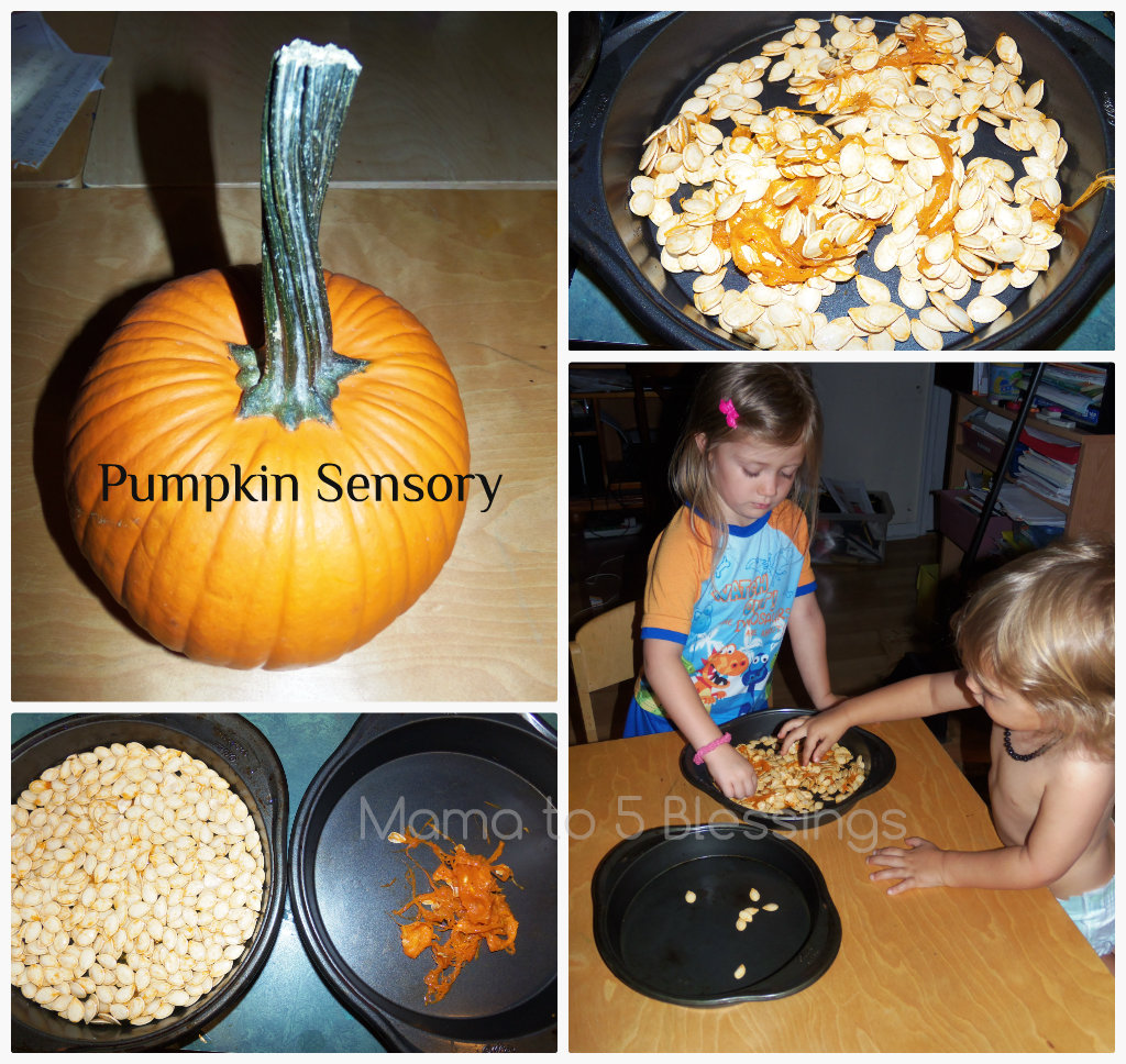 pumpkin sensory collage