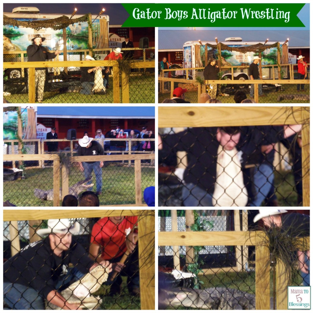 gator boys wrestling ollage