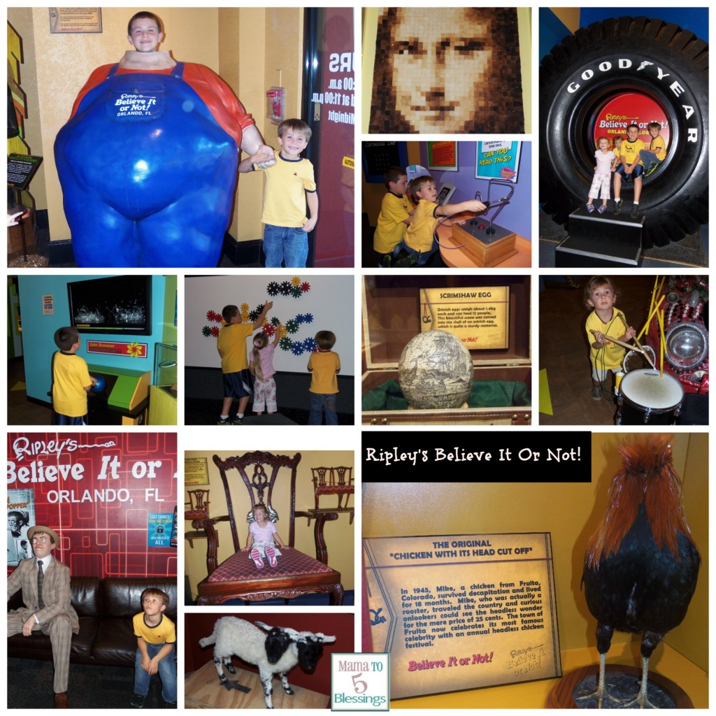 ripleys collage