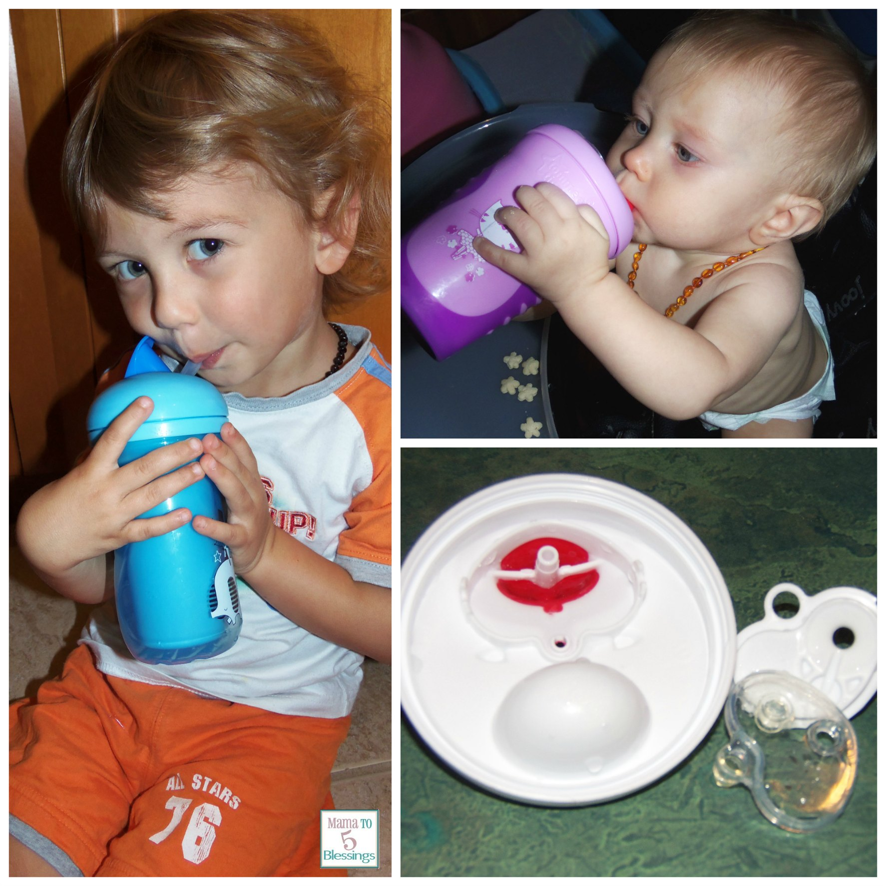 Tommee Tippee 3 Ring Circus Collage