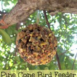 DIY Pine Cone Bird Feeder (Learn & Link With Linky)