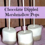Chocolate Dipped Marshmallow Pop Party Favors