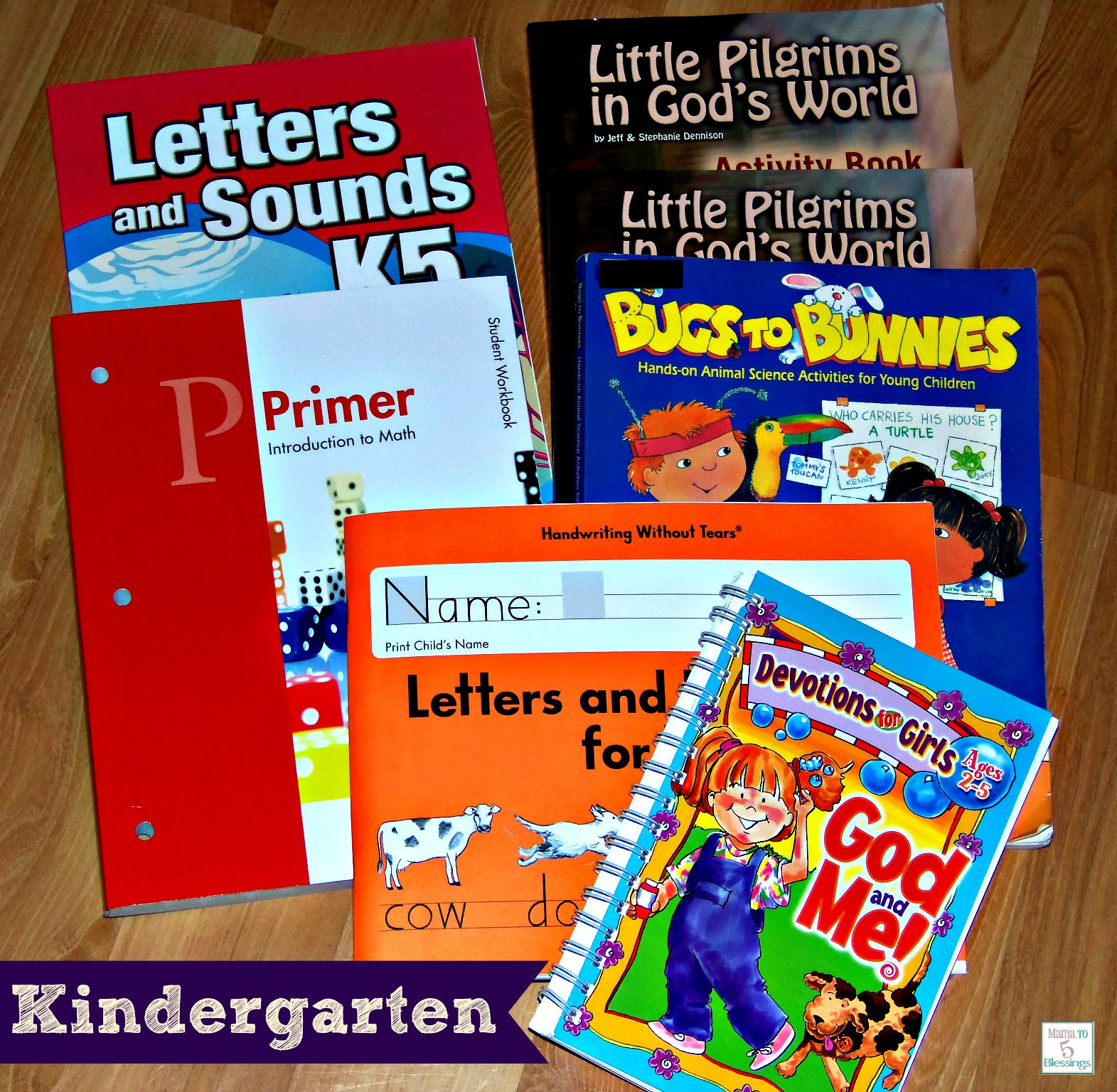 homeschool curriculum K
