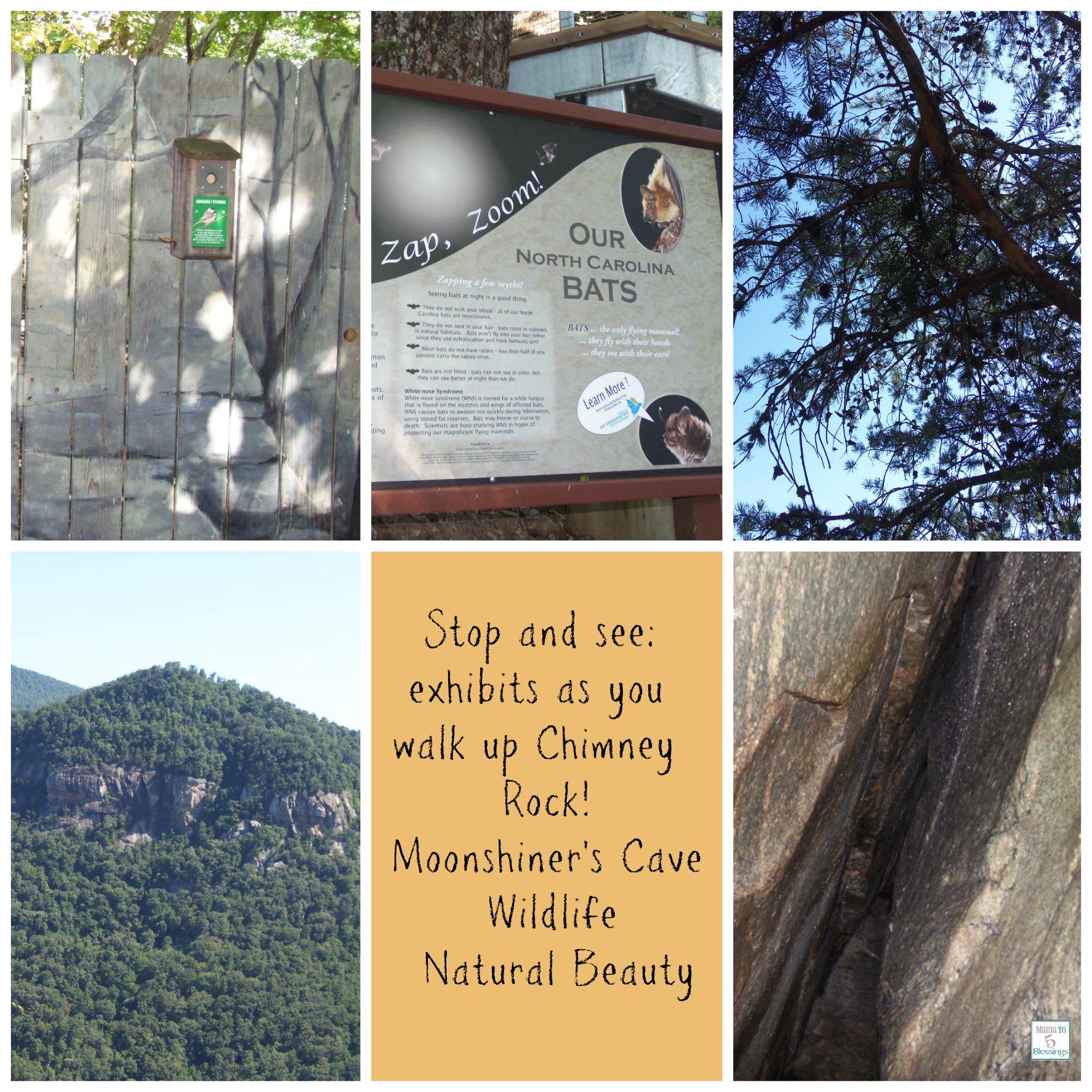 chimney rock at Chimney Rock State Park
