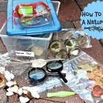 How To Make A Nature Box (Learn & Link)