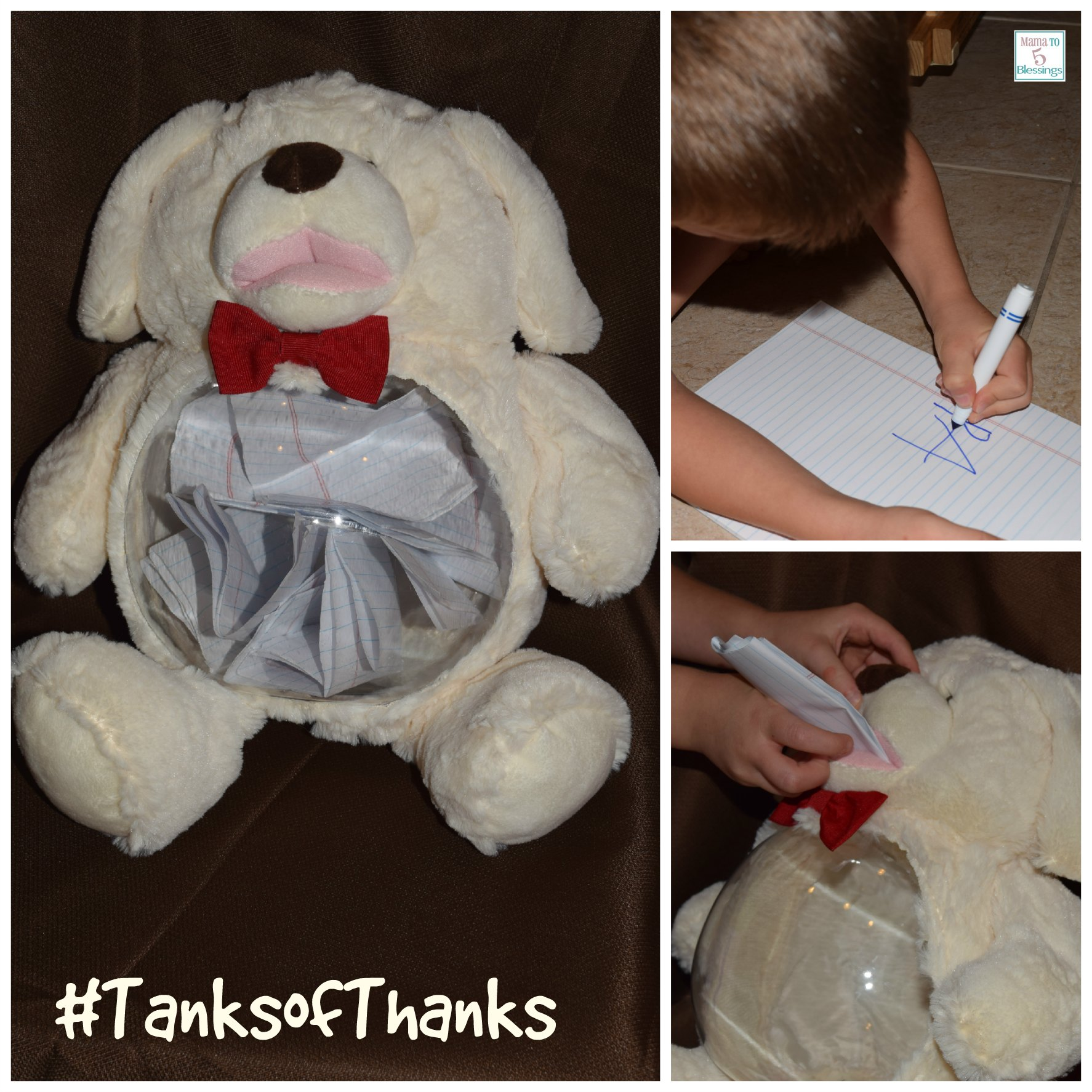 teddy tanks collage
