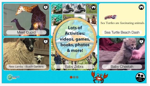 Baby Animals App