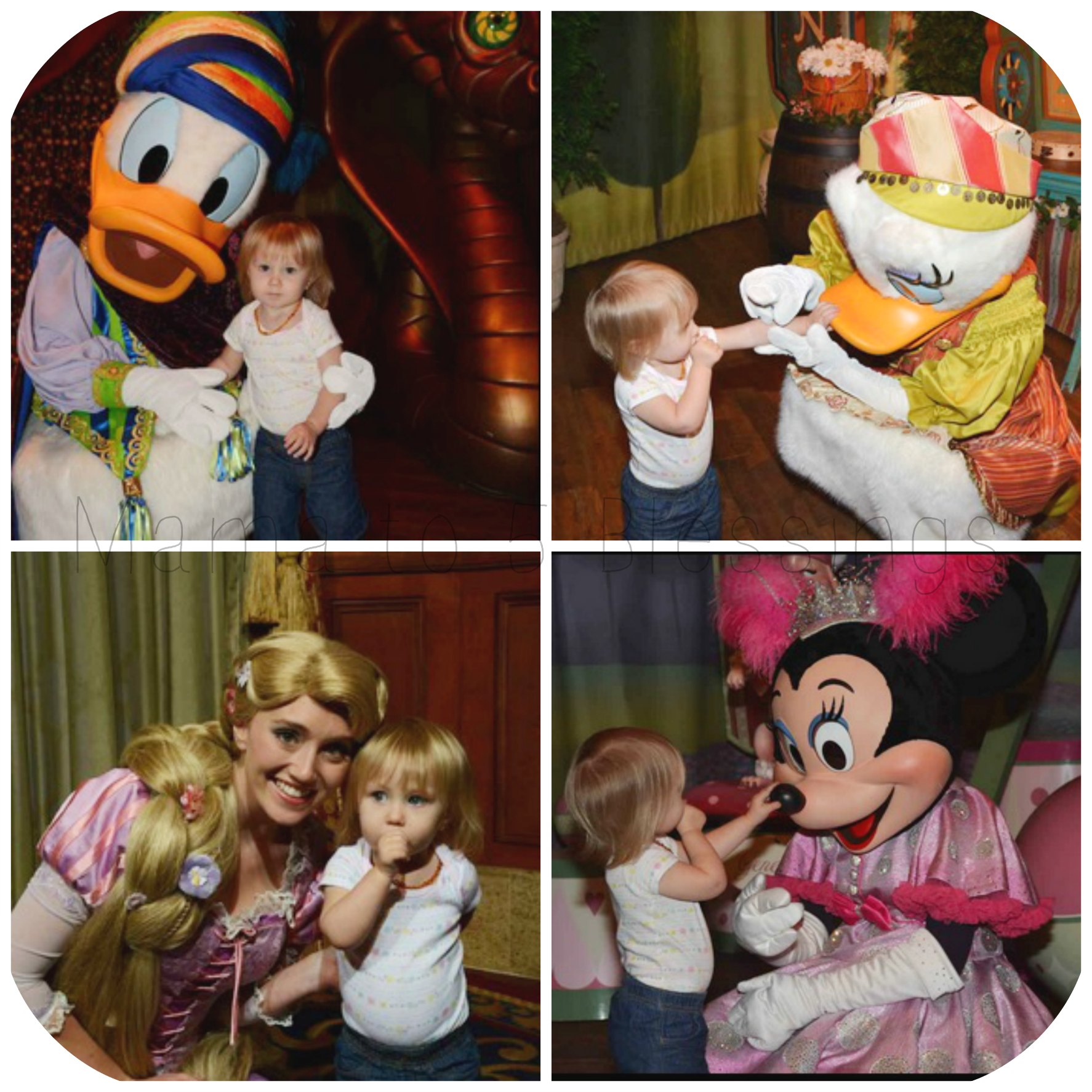 Disney Joy collage
