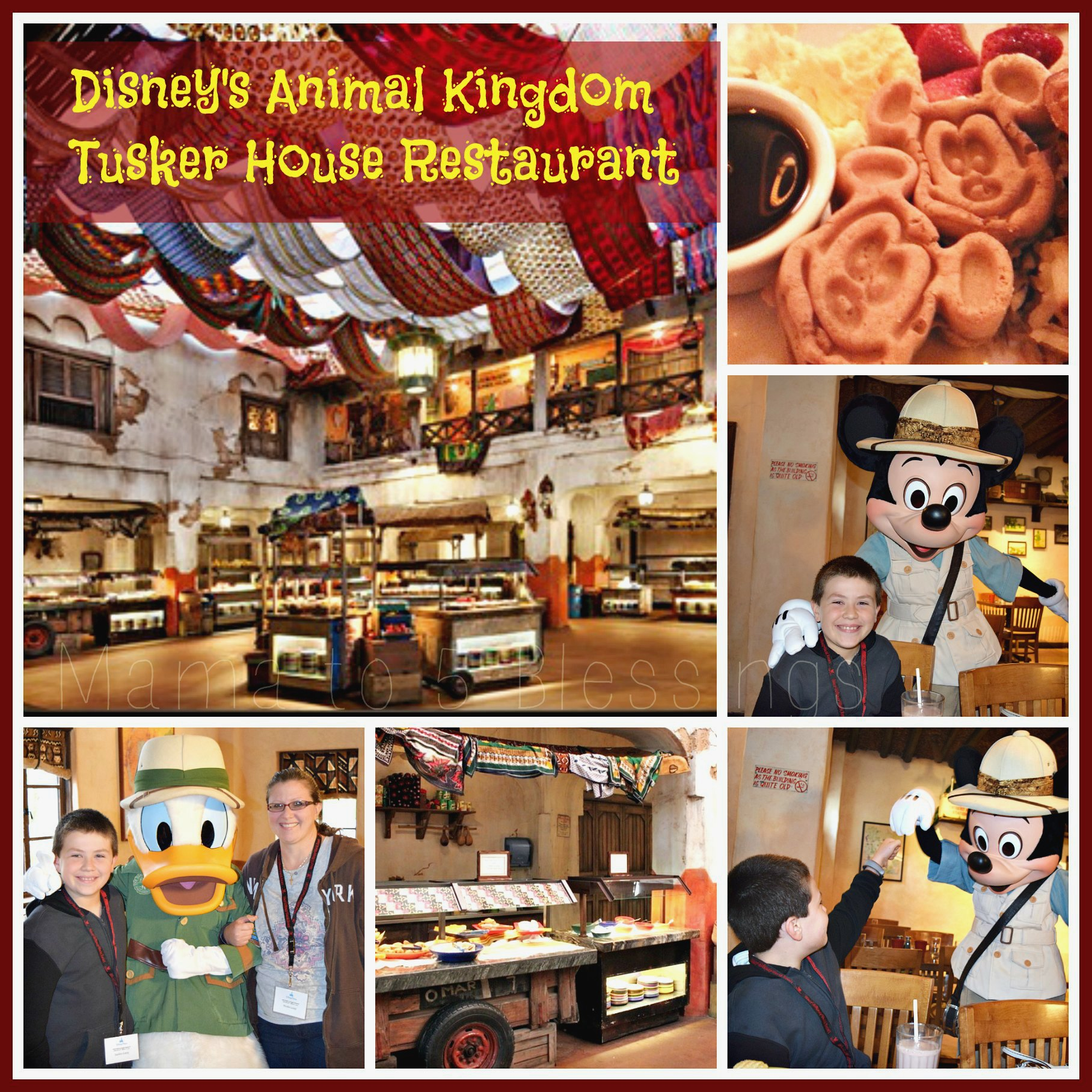 Disney's Tusker House Collage use a