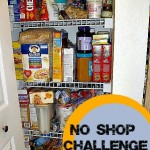My 30 Day No Shop Challenge Update