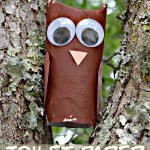 Toilet Paper Tube Owl (Kids Craft) With Linky