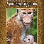 The Monkey Kingdom Movie Captured My Heart