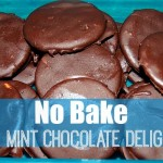 No Bake Thin Mints Chocolate Delights