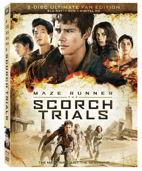 maze runner scorch