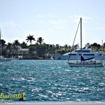 Florida Intracoastal (Almost) Wordless Wednesday With Linky