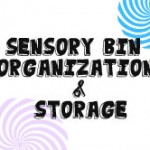 Sensory Bin Materials Organization & Storage (Learn & Link W/ Linky)