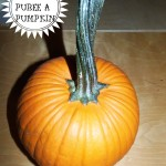How to Make Homemade Pumpkin Puree (Recipe)