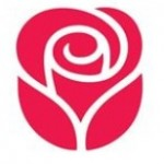 Stay Connected With Loved Ones With eCards By American Greetings