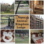 Staying With Exotic Animals At Disney's Animal Kingdom's Lodge #WDWBigFun
