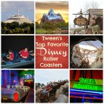 Disney Is Full Of Twists And Turns With Amazing Roller Coasters #WDWBigFun