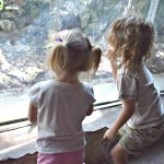 Sibling Interaction (Almost) Wordless Wednesday With Linky